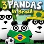 3 панди в Бразилії
