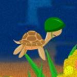 Пригоди черепахи