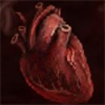 Останнє серце